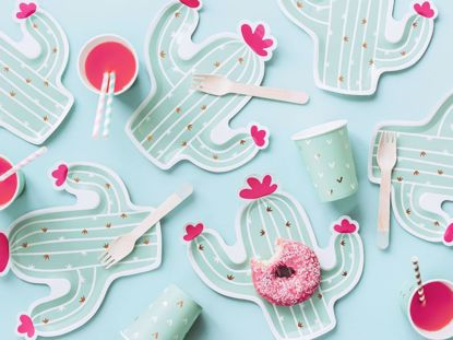 Picture of Cactus Plates  Llama Party